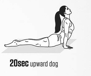 upward dog pose