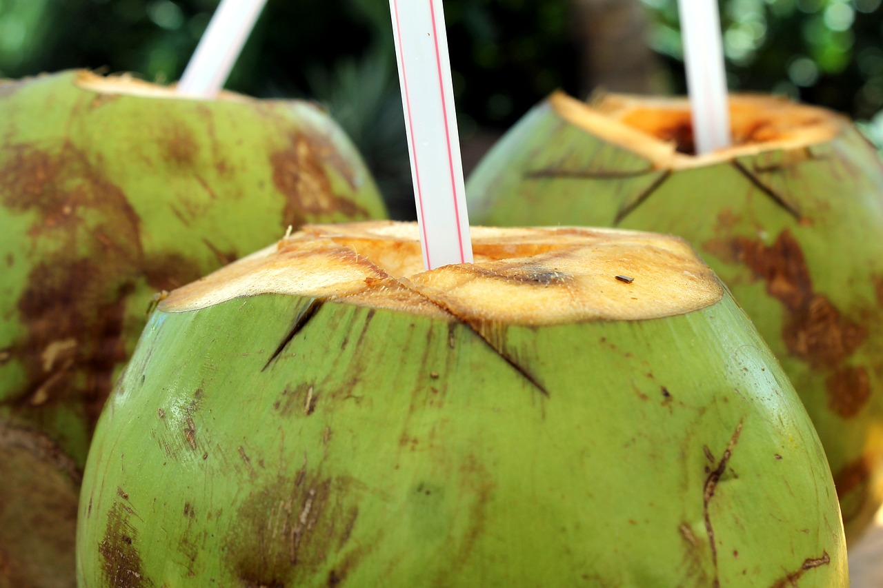 What Are The Benefits Of Drinking Coconut Water Athelio